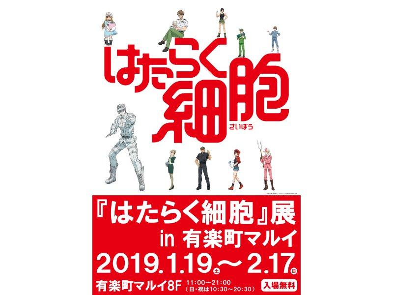 【東京】『はたらく細胞』展 in 有楽町マルイ:2019年1月19日(土)~2月17日(日)
